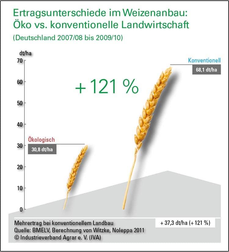 Öko-vs-konventioneller-Weizenanbau