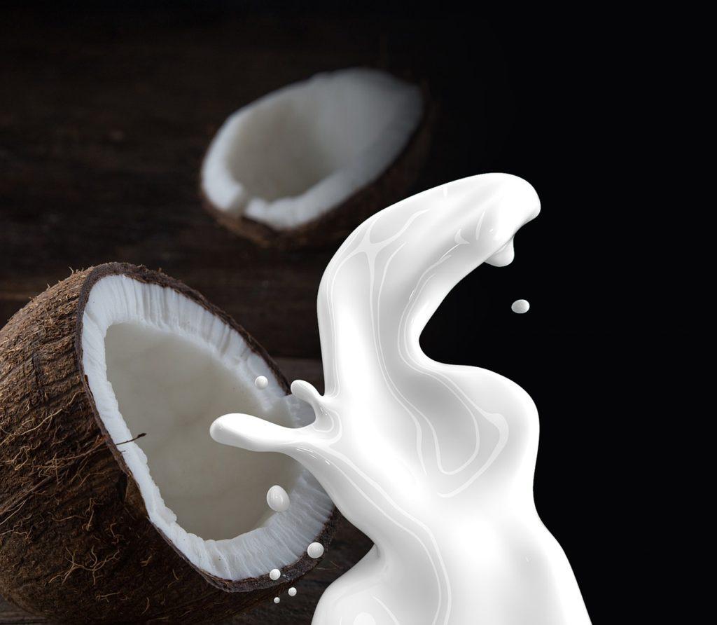 Kokosmilch aus der Kokosnuss